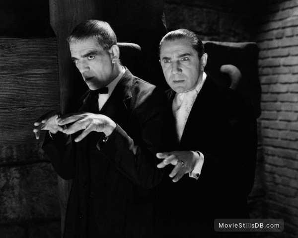 The Raven - Publicity still of Bela Lugosi & Boris Karloff