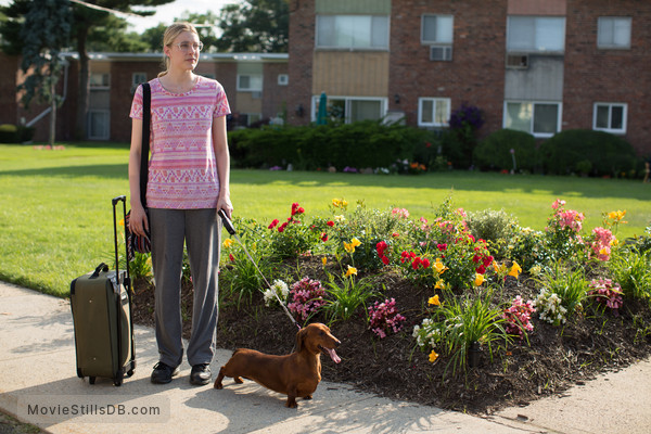 Wiener-Dog - Publicity still of Greta Gerwig
