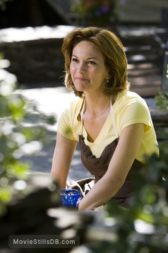 Nights in Rodanthe - Publicity still of Diane Lane