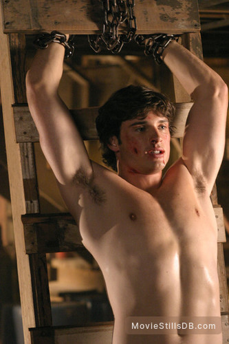 Smallville - Publicity still of Tom Welling