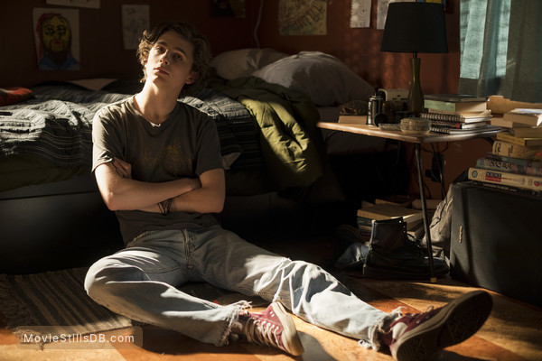 Beautiful Boy - Publicity still of Timothée Chalamet