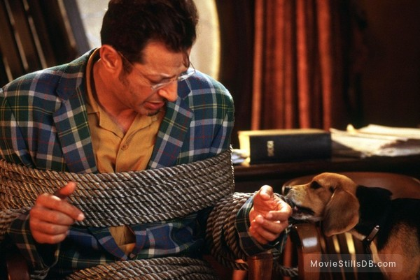 Cats & Dogs - Publicity still of Jeff Goldblum