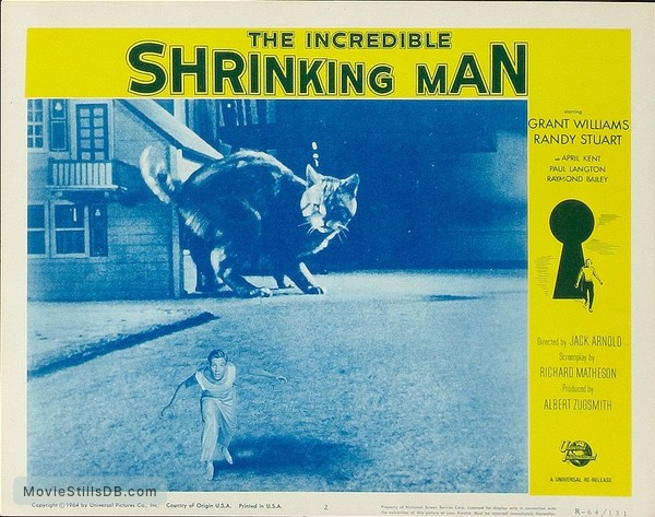 The Incredible Shrinking Man - Lobby card