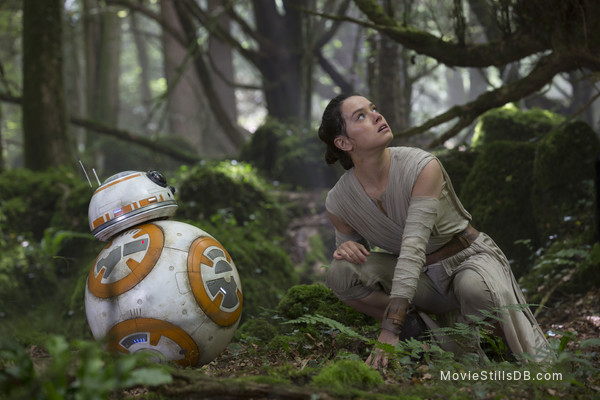 Star Wars: The Force Awakens - Publicity still of Daisy Ridley